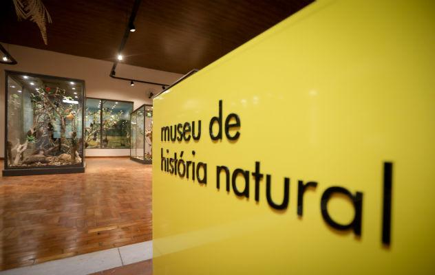 Museu de História Natural reabre em Campinas